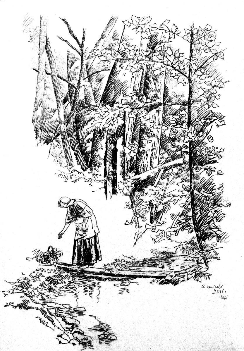 Утро у лесного ручья.